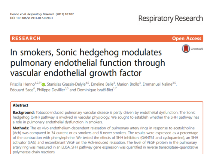 In smokers, Sonic hedgehog modulates pulmonary endothelial function through vascular