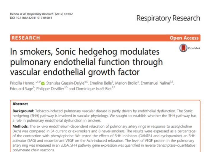 In smokers, Sonic hedgehog modulates pulmonary endothelial function through vascular
